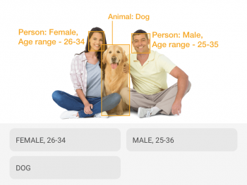 Stock photo of male and female couple with a dog correctly detected and annotated with bounding boxes and description by AI models