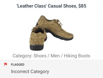 Casual shoes incorrectly categorized as hiking boots hence flagged by category and tag checks for ecommerce